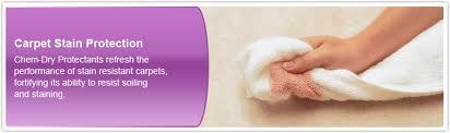 World famous chem dry carpet protection