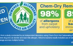 chemdry_allergen